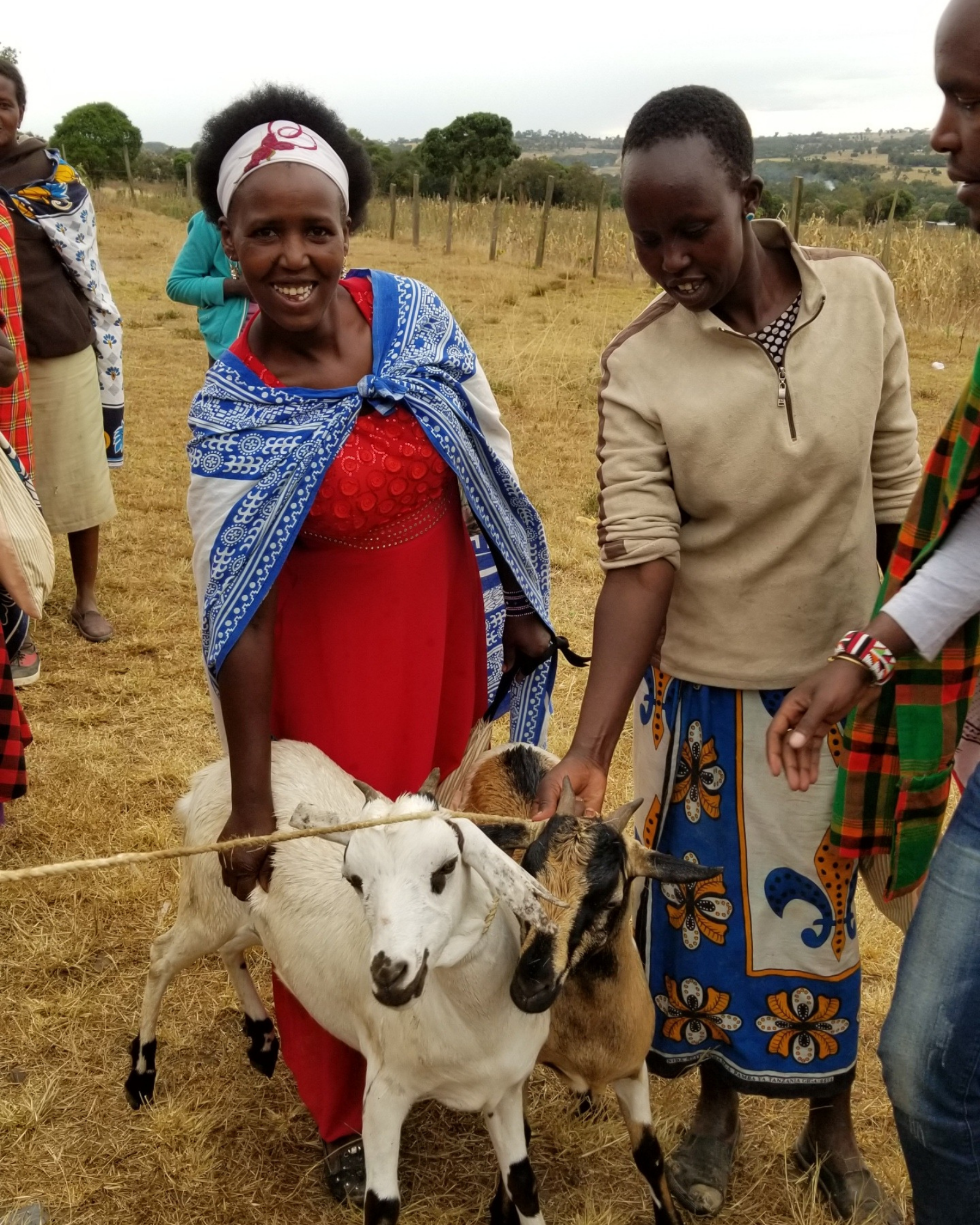 Donate a goat to a family
